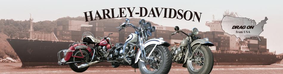 02Harley-Davidson USA